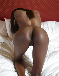 Ebony Lady Valerie Royal Gold