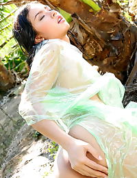 Asian jasmine wang 09 raincoat water forest