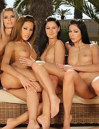 Four amazing vixens in sultry orgy