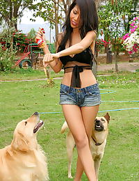 Asian rita chan 14 forest dogs