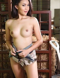 Nude Oriental Beautiful Female Marky